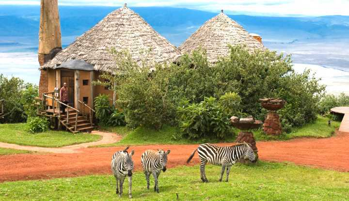 Tanzania Explorer Safari | African Safari with Taga