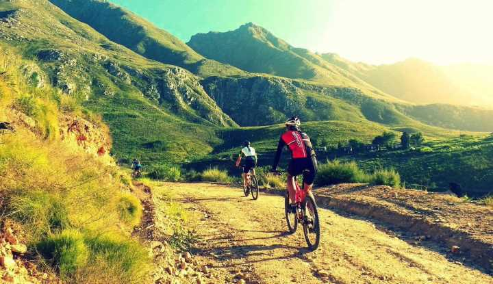 Cape Winelands Cycling (FD) | Taga Safaris