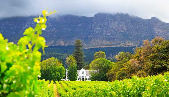 Cape Winelands Cycling (FD) | African Safaris with Taga