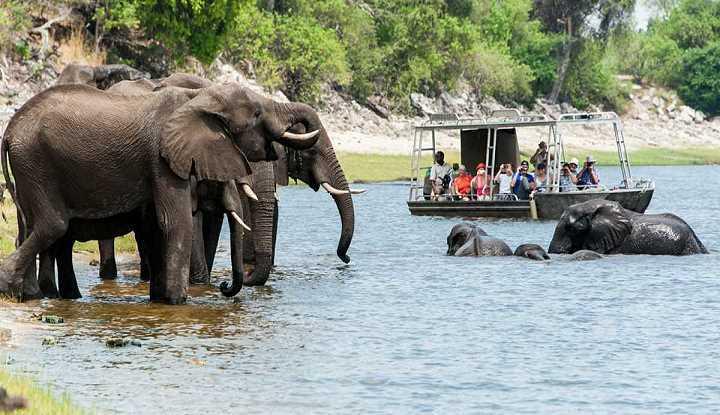 Zambezi Queen | African Safaris with Taga