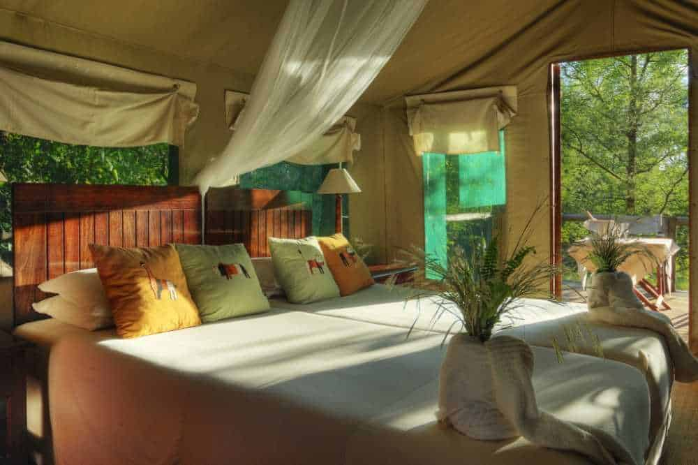 Camp Moremi | African Safari with Taga
