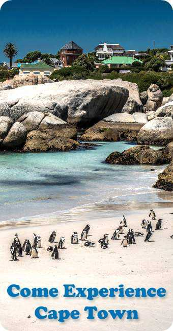 Cape Town Hotels and Tours