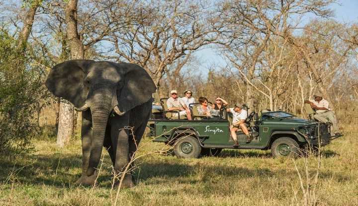 Celestial South Africa | African Safaris with Taga