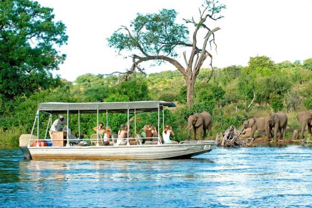 Chobe Chilwero Safari Lodge | Taga Safaris