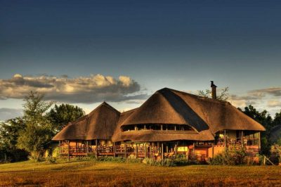 Chobe Savanna Lodge | African Safari with Taga