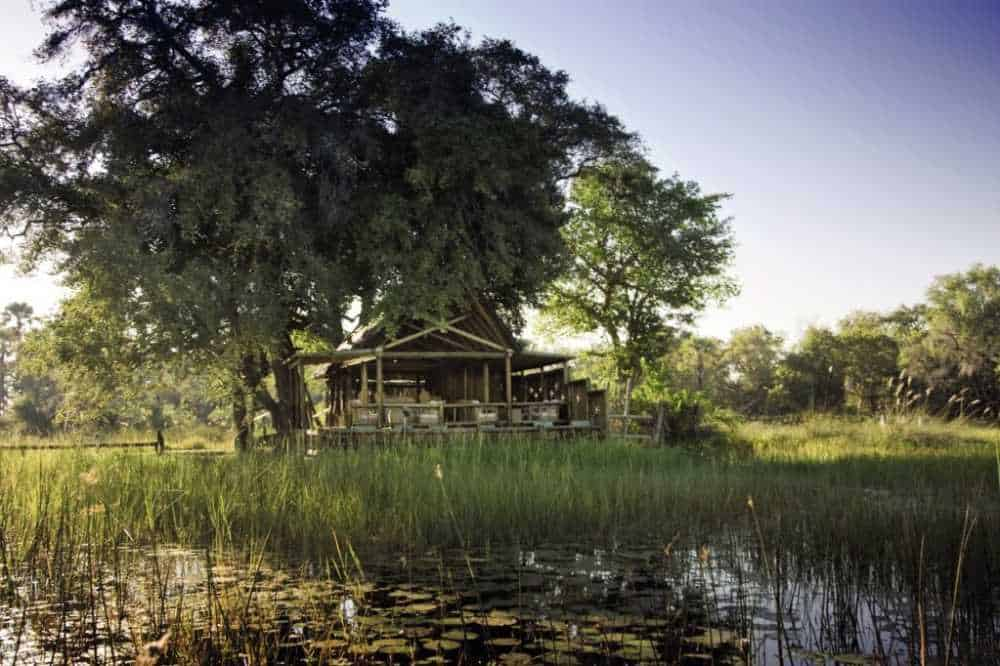 Eagle Island Camp | African Safaris with Taga