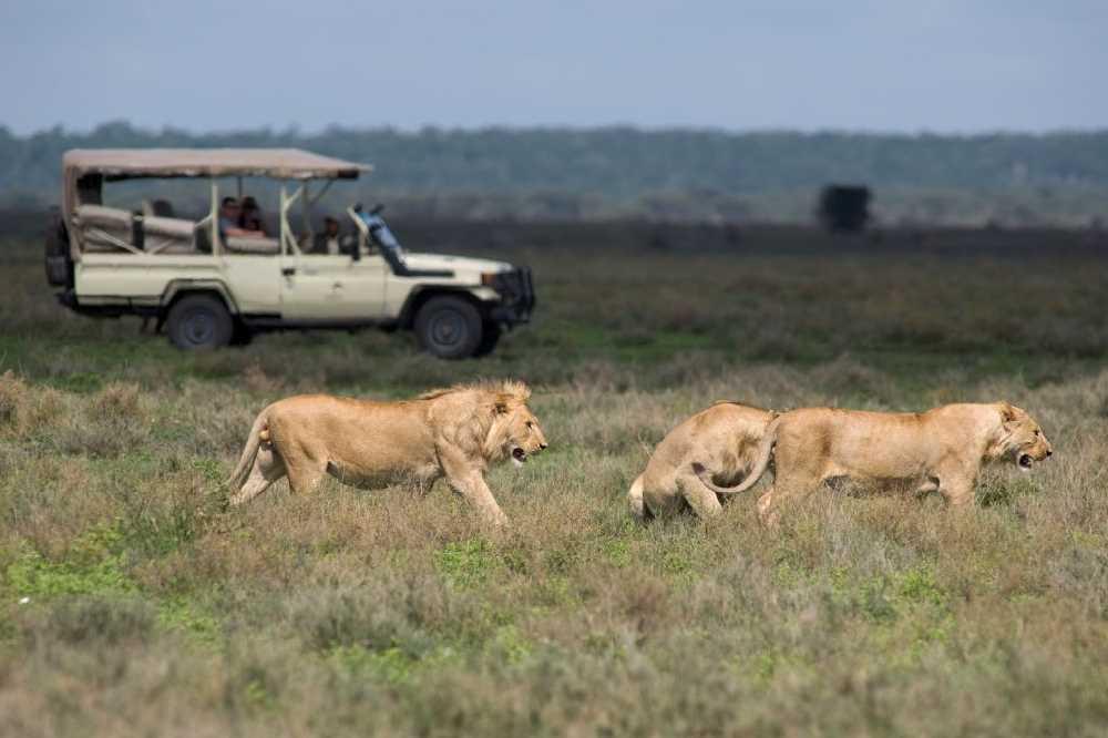 Kusini Camp | Taga Safaris