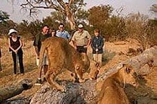 Victoria Falls Hotels and Resorts | Taga Safaris