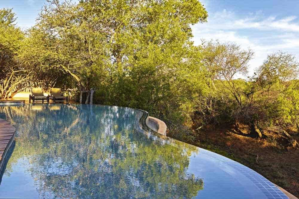 Makanyane Safari Lodge | African Safaris with Taga