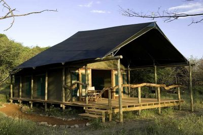 Ongava Tented Camp | African Safari with Taga