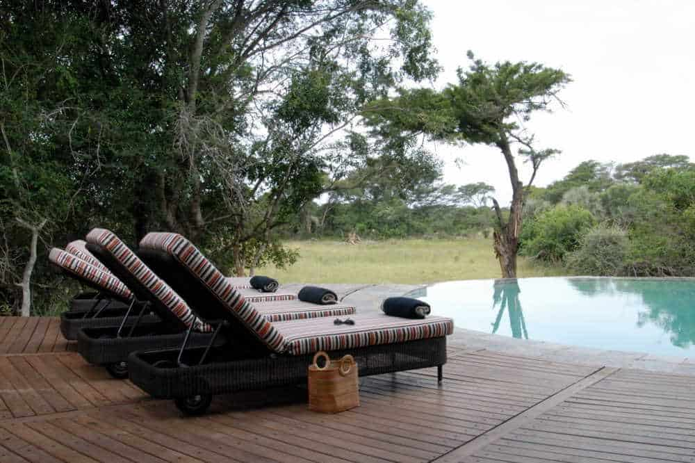 Phinda Forest Lodge