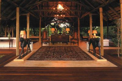 Royal Malewane Game Reserve | African Safari with Taga