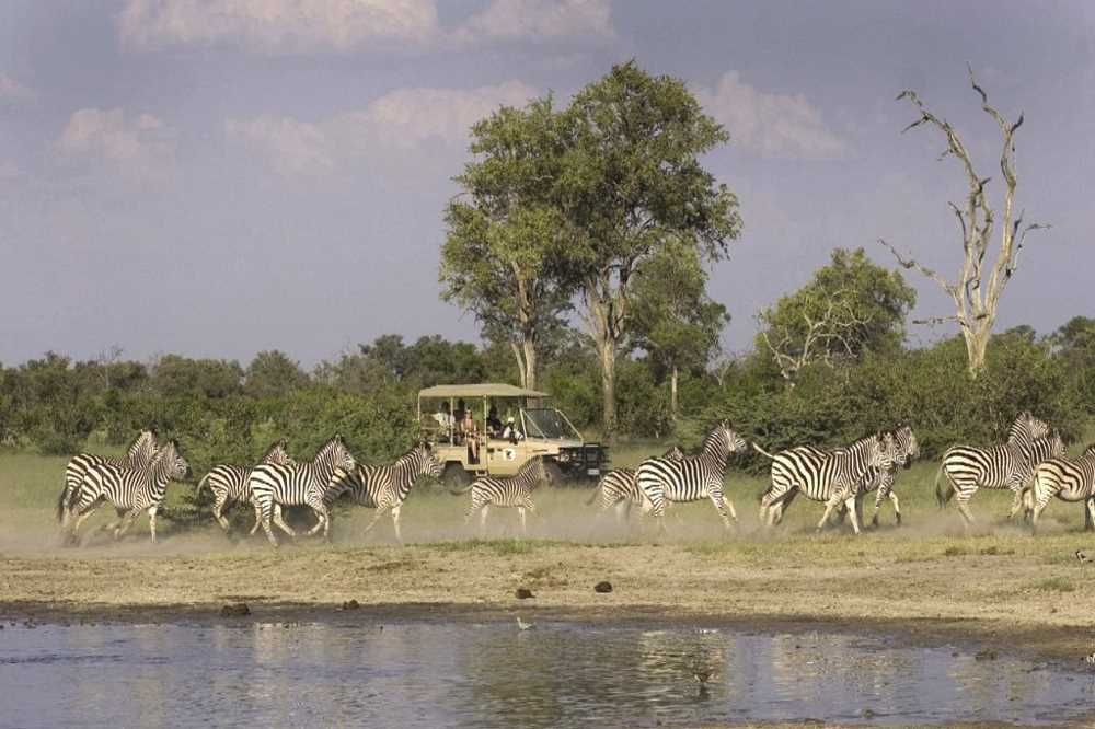 Savute Elephant Camp | African Safari with Taga