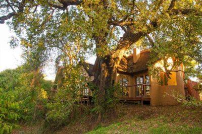 Shishangeni Safari Lodge | African Safaris with Taga