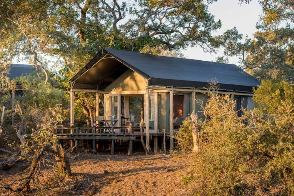 Simbavati River Lodge | African Safari with Taga