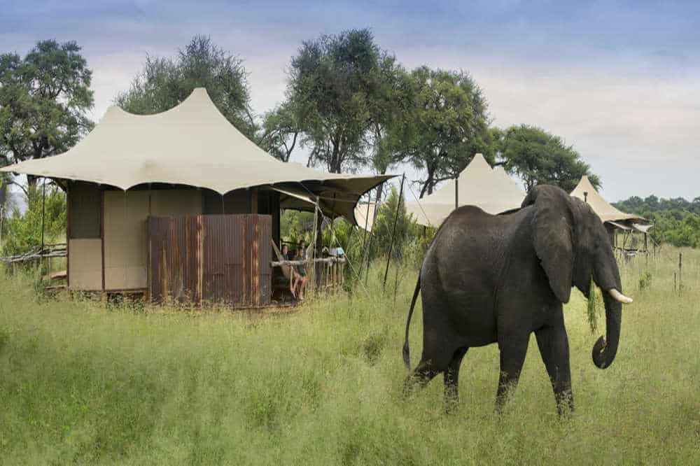 Somalisa Camp | African Safaris with Taga