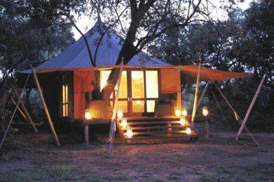 Ngala Game Reserve | African Safari with Taga