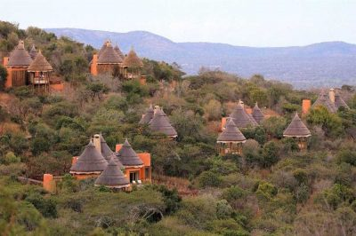 Thanda Game Reserve | Taga Safaris
