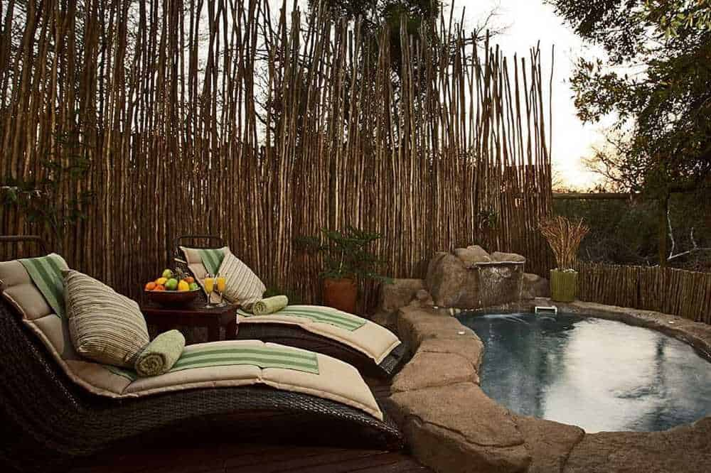 Thornybush Game Lodge | African Safari with Taga