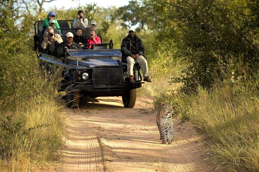 Travel Information Africa