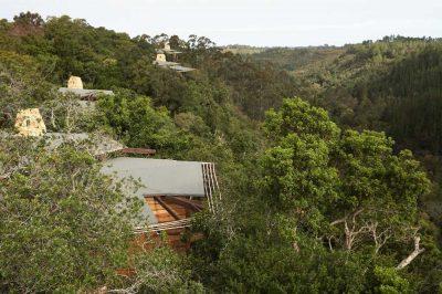 Tsala Treetop Lodge | Taga Safaris