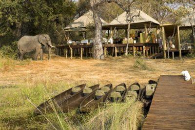 Xaranna Camp | African Safari with Taga