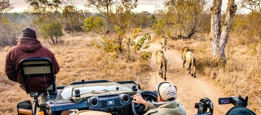 IncredibleLife changingAfrican Safaris
