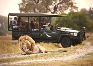 Fly me around Botswana   African Safaris with Taga