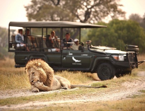 Fly me around Botswana