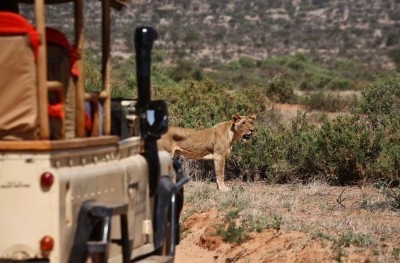Safari Bookings to Africa | African Safaris with Taga