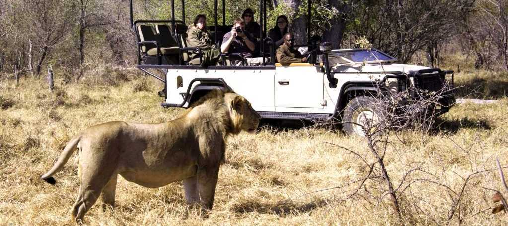 Designer Destination Safaris | African Safaris with Taga