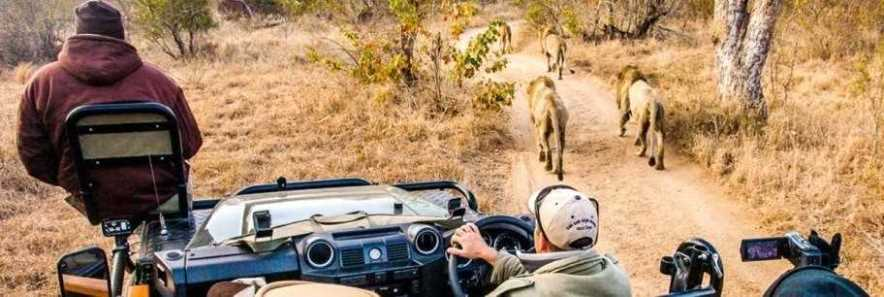 Bush and Beach Holidays | Taga Safaris