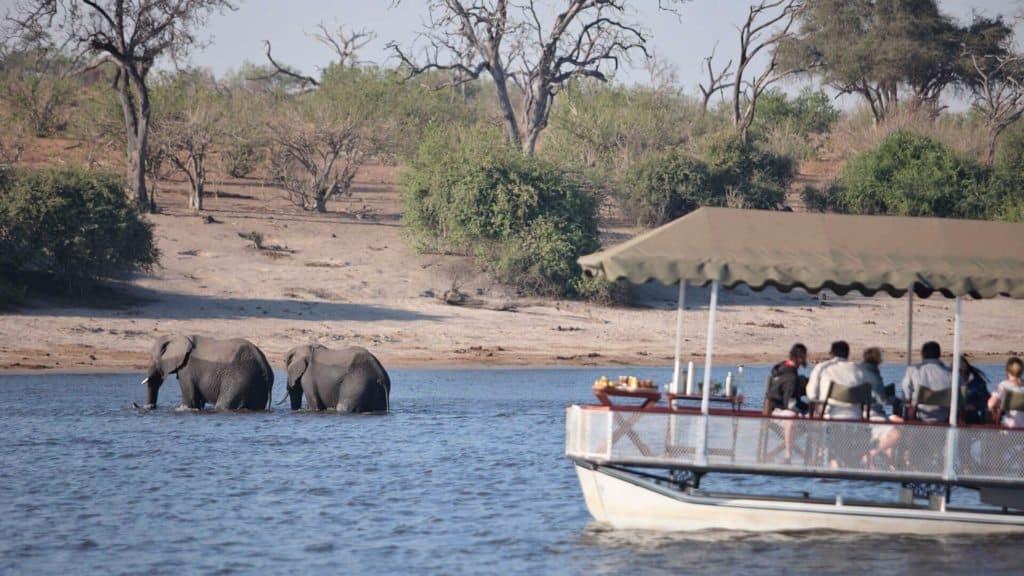 Botswana luxury Safaris for less | African Safaris with Taga