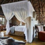 The new and improved Geiger's camp | African Safari with Taga