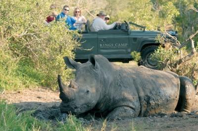 The History of Kings Camp | African Safari with Taga