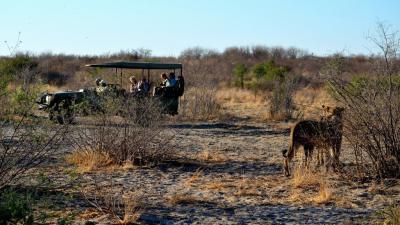 Kwando Reserve | African Safari with Taga