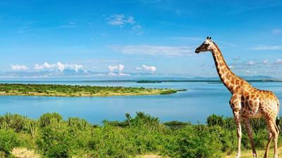Lake Victoria | Taga Safaris