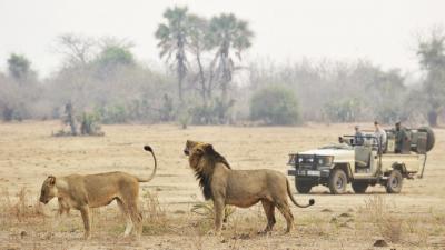 Lower Zambezi National Park | African Safari with Taga