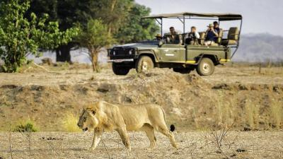 Mana Pools National Park | African Safari with Taga