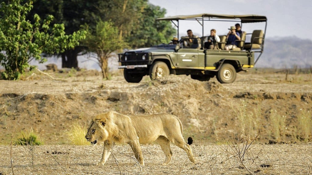 Zimbabwe Safari Lodges and Camps | African Safaris with Taga