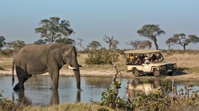 Savuti Channel | African Safari with Taga