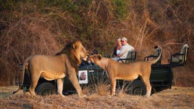 South Luangwa National Park | Taga Safaris