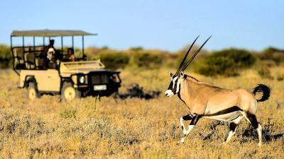 The Kalahari | African Safari with Taga