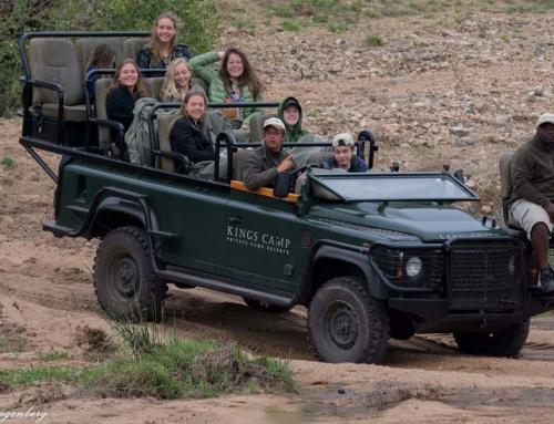 Photographic Safaris in South Africa: Everything You Need to Know
