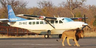 African Safaris | African Safari with Taga