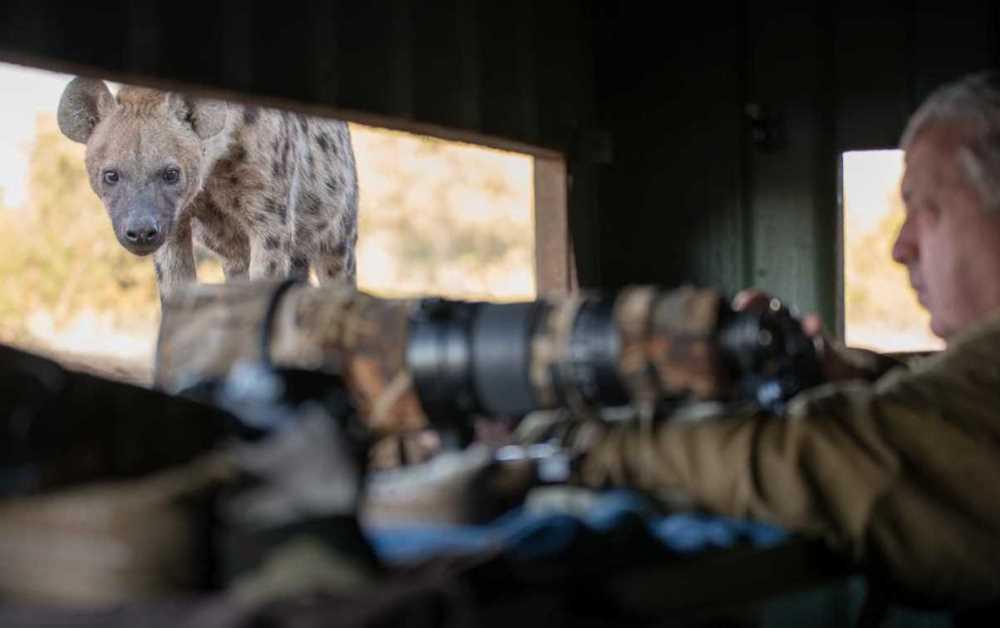 Mashatu Hide Safari | African Safari with Taga