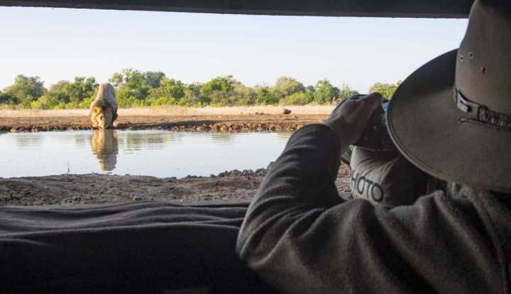 Mashatu and Mala Mala | African Safari with Taga