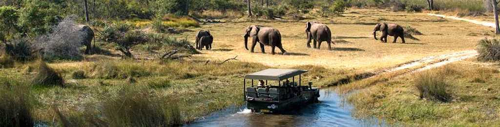 Okavango Delta - Ultimate African Safari