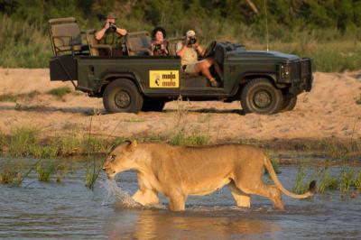 The Magnificent 3 Safari | Taga Safaris