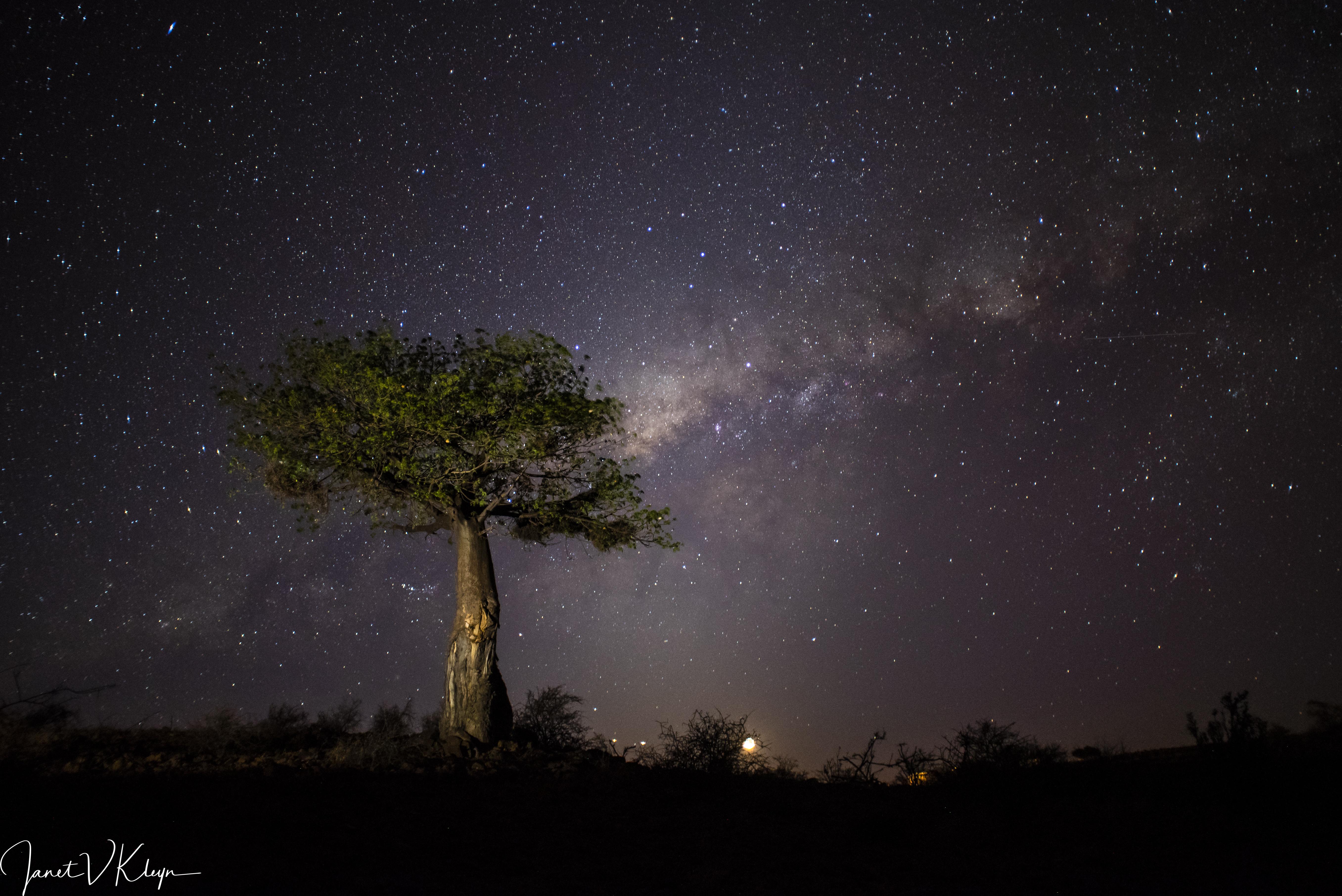 Farewell 2018 | Taga Safaris - An African Safari with the Pioneers